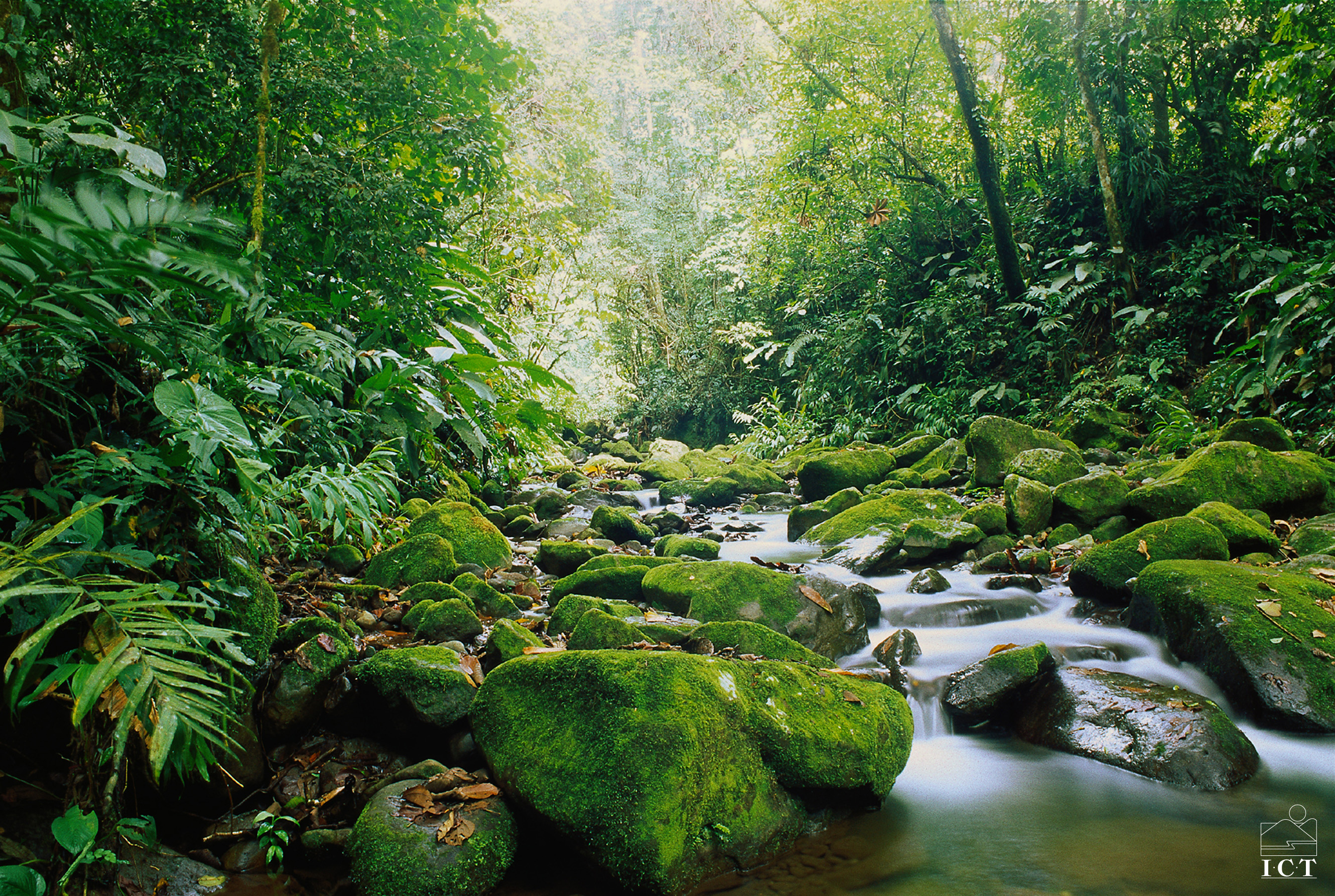 tourism and the environment of costa rica